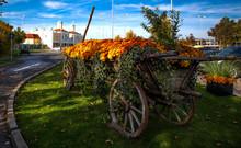 Wooden Horse Cart Flower Garden