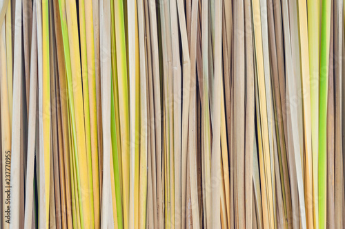 Fototapeta Papyrus sedge build to a backdrop for decoration in country styl