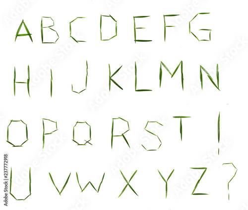 English alphabet made of palm leaves on white background