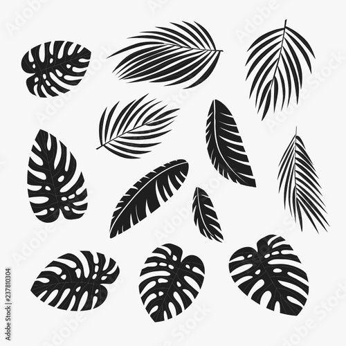 Palm leaves silhouette Wall mural