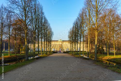 Fotografie, Obraz  Outdoor sunny diminishing perspective scenery of walkway along with trees toward Sanssouci Palace, schloss sanssouci, and vineyard terrace in winter season