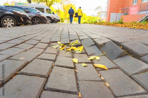 Fotografia, Obraz  Destruction of paving slabs
