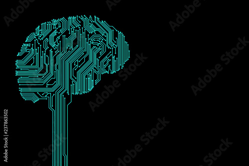 Fotografie, Obraz  Printed circuit in the form of a brain