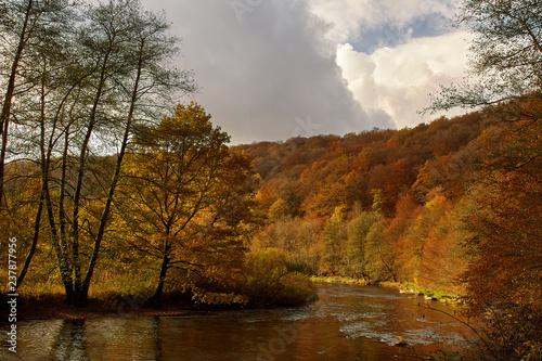 River Semois in Autumn Colorful Ardennes #237877956