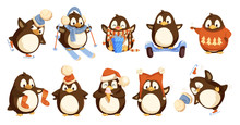 Penguins Wearing Winter Warm C...