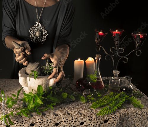 La strega e la pozione magica Canvas-taulu