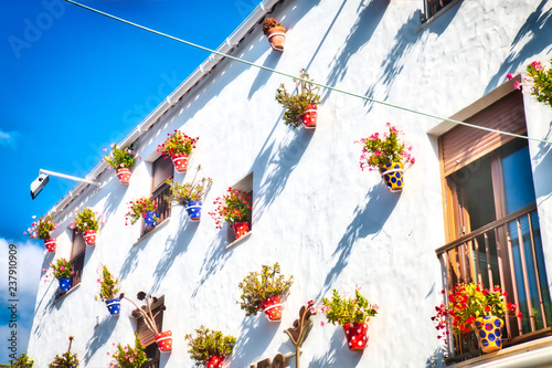Fototapeta Typical Andalusian house facade, full of pots with flowers, in Conil de la Front