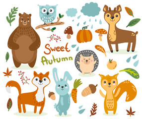 Set of illustrations with animals on the theme of autumn bear fox hedgehog squirrel squirrel deer owl pumpkin mushrooms leaves rain mountain ash different pictures for children