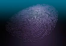 Human Fingerprint, Illustration