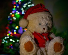 White Teddy Bear Wearing Red Scarf And Cap With Nice Bokeh Lights At The Background.Christmas Concept.