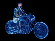 Illustration Of A Biker's Brain