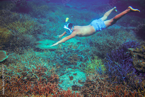 Foto auf Gartenposter Aubergine lila Man snorkeling in coral reef. Man dives in full face mask undersea. Snorkeling in tropical sea underwater photo.