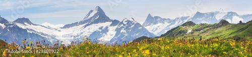 Alpine peaks of Grindelwald and Jungfrau Wallpaper Mural