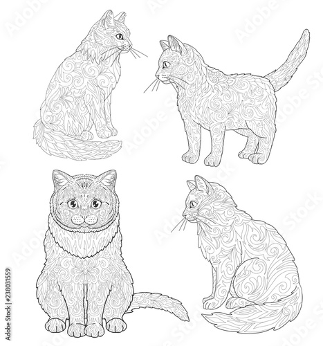 Cat And Kitten Coloring Book Page Set. Doodle Ornamental Animal. - Buy This  Stock Vector And Explore Similar Vectors At Adobe Stock Adobe Stock