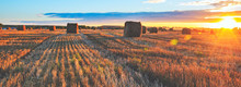 Panoramic View Of Hay Bales On...