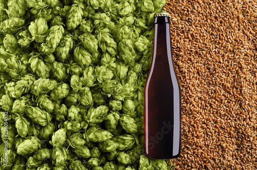 Fotografiet Dark  beer bottle on a background with hops and wheat