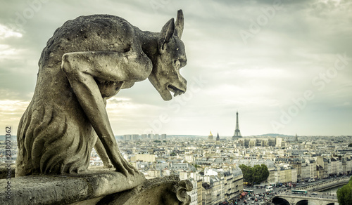 Fotografia, Obraz Gargoyle on Notre Dame de Paris cathedral looks at Eiffel Tower, France