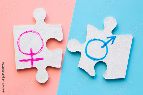 Fotografía  puzzle pieces with male and female gender symbols on the pink and blue background