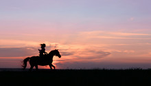 Galloping Horse With Female Rider On Beautiful Colorful Sunset Background. Romantic Equine And Female Silhouette On Horse Hiking With Red Rising Sun On Horizon