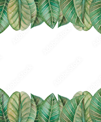Photo Stands Asia Country Illustration of watercolor hand drawn green floral card with leaves isolated on white background. Spring or summer flowers for invitation, wedding or greeting cards. Tropical.