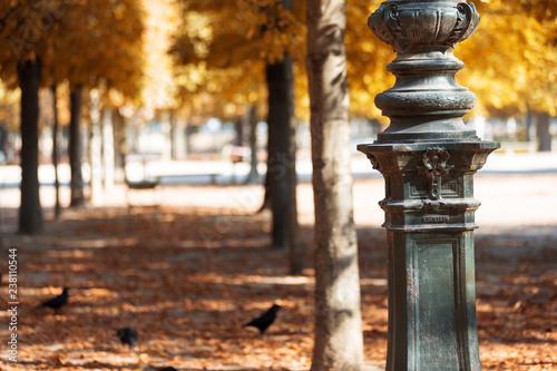 Europe Centrale Autumn in Paris. Garden Tuileries.