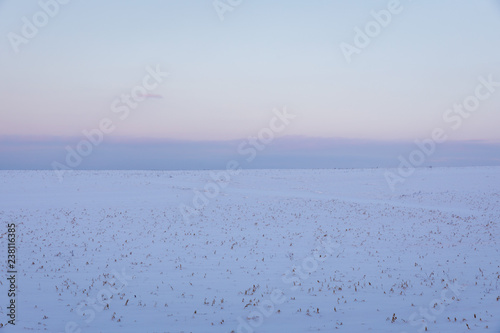 Fotografie, Obraz  A snowy field in rural upstate New York, USA.