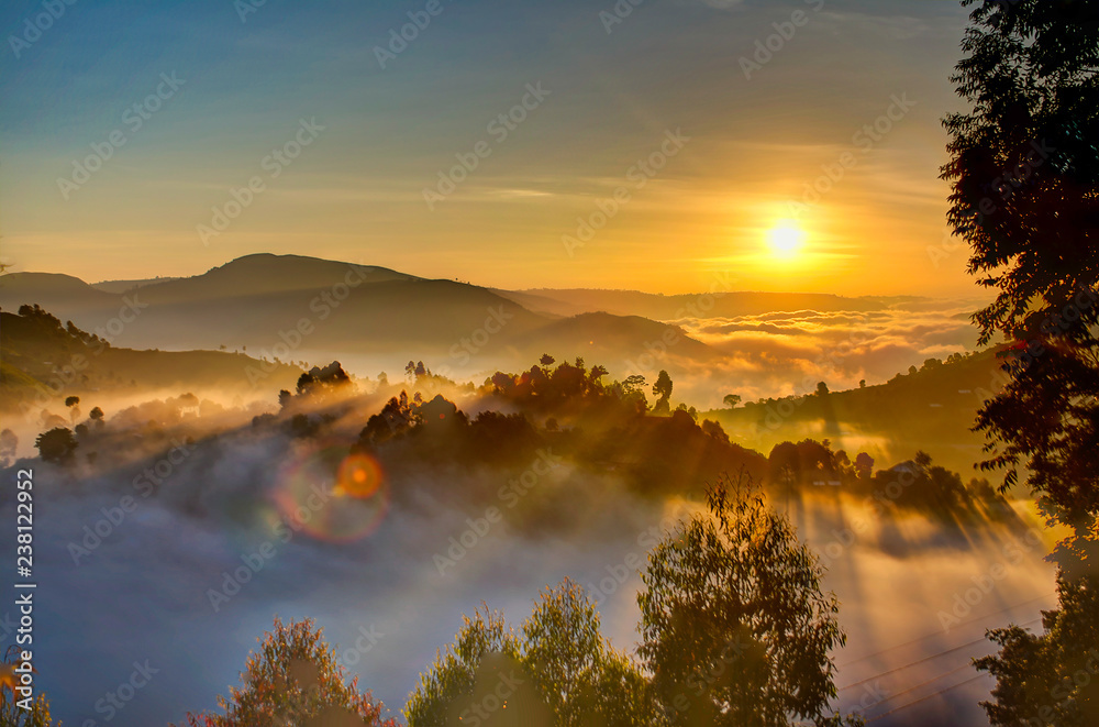Fototapety, obrazy: Uganda sunrise with trees, hills, shadows and morning fog
