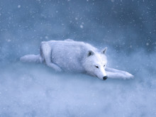 3D Rendering Of A Majestic White Wolf Sleeping In Snow.