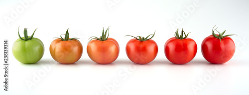 Evolution of red tomato isolated on white background Fotobehang