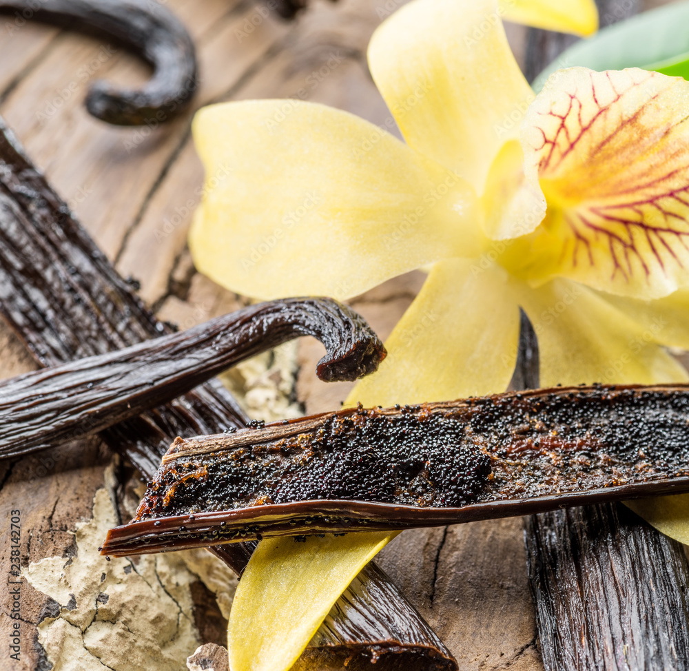 Dried vanilla fruits and vanilla orchid on wooden table.
