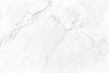 White Gray Marble Background W...