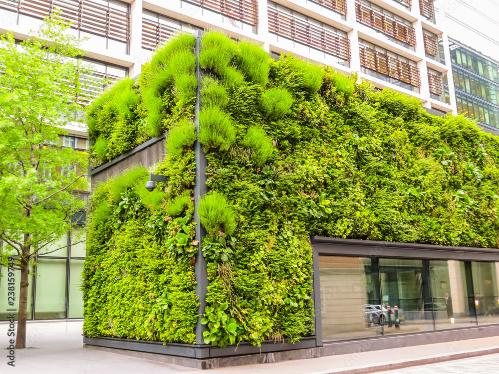 Fototapeta Ecological architecture, green living facade of the building