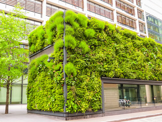 Ecological architecture, green living facade of the building