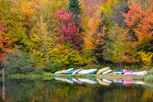 Poster Miel colorful atmosphere near a peaceful lake in autumn.