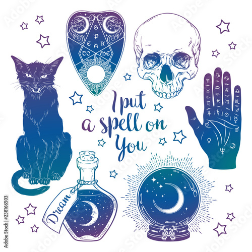 Photo Magic set - planchette, skull, palmistry hand, crystal ball, bottle and black cat hand drawn art isolated