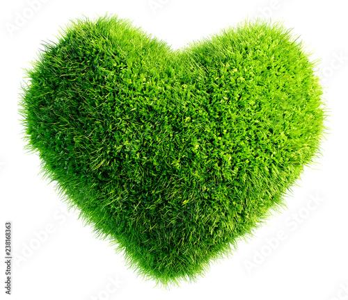 green leaves in heart shape isolated Obraz na płótnie