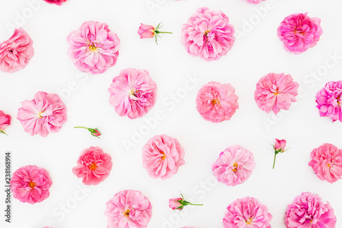 Poster Fleur Floral pattern made of pink roses flowers, petals on white background. Flat lay, Top view. Valentines day