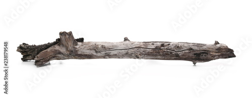 Poster Firewood texture Dry branch for camp fire isolated on white background