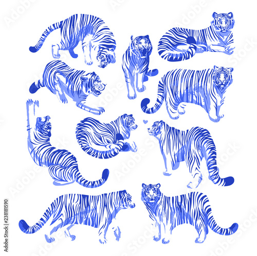 Fotografie, Obraz  Graphic collection of tigers in different poses.