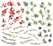 Watercolor Set Of Holly Berries, Spruce, Pine Cones And Dry Twigs For Christmas Decoration