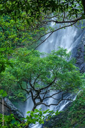 Aluminium Prints Green Waterfall Khonglan Kamphaeng Phet