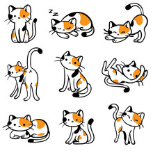 Vector Illustrated Tri-colored Calico Cats