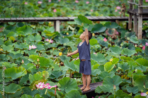 Vietnamese boy playing with the pink lotus over the traditional wooden boat in the big lake at thap muoi, dong thap province, vietnam, culture and life concept