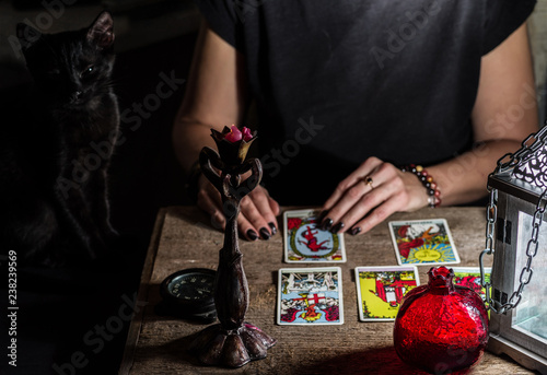A fortune teller with a black cat read the Tarot cards. Selective focus.