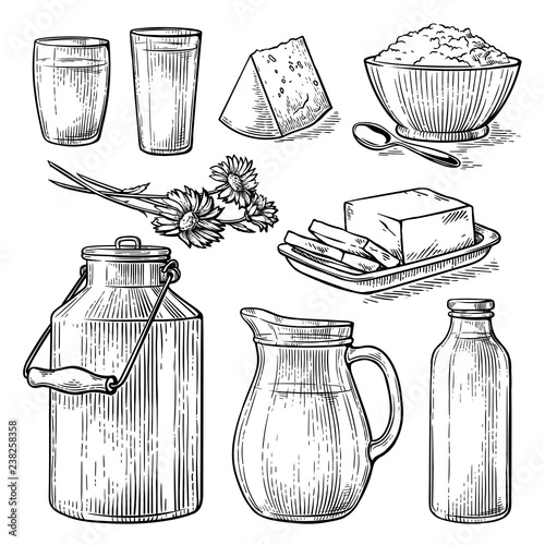 Fototapeta collection items dairy products drawing sketch glass milk bottle iron can cup cheese flowers crumbly curd vector illustration obraz