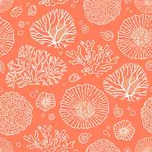 Seamless Pattern Vector With C...