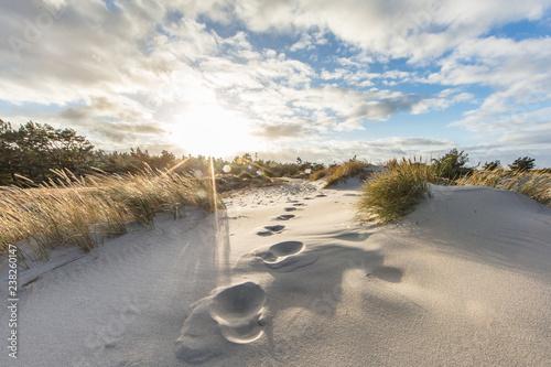 Valokuva  spuren im sand