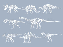 Set Of Dinosaurs Fossils Skele...