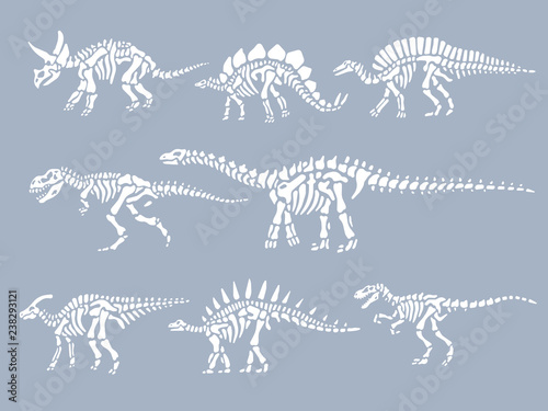 Obraz na plátně  Set of dinosaurs fossils skeletons. Vector illustration