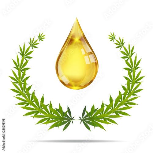 Fototapeta Marijuana plant and cannabis oil drop vector. obraz